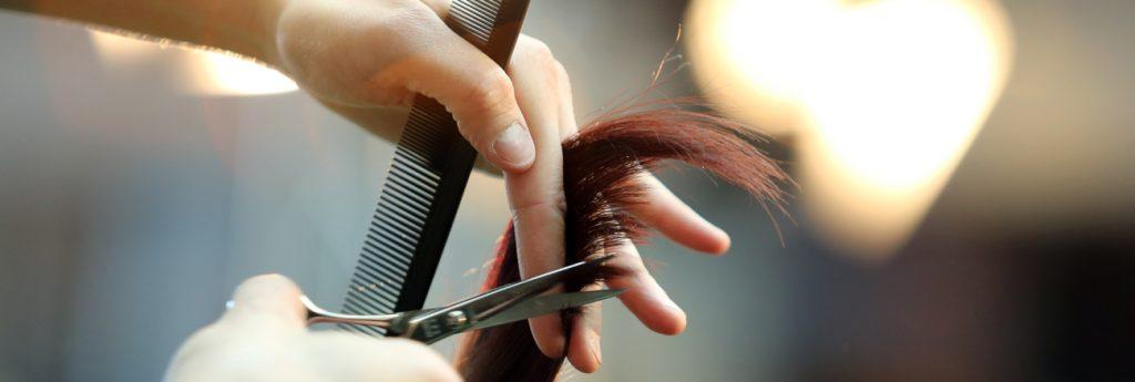 programa peluquerias